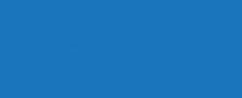 VBBT Logo Fish